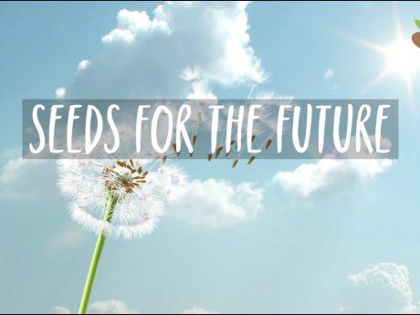 Конкурс серед студентів для участі у всесвітній онлайн-програмі «Насіння для майбутнього» (Seeds for the future)