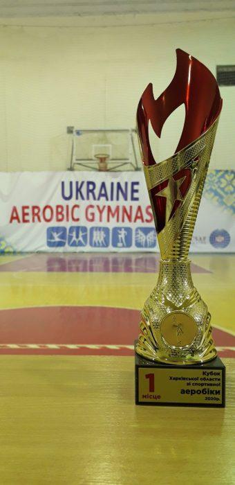 Кубок Харківської області зі спортивної аеробіки